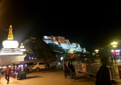 布达拉宫的夜景