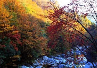 四川秋季看彩林红叶的地方