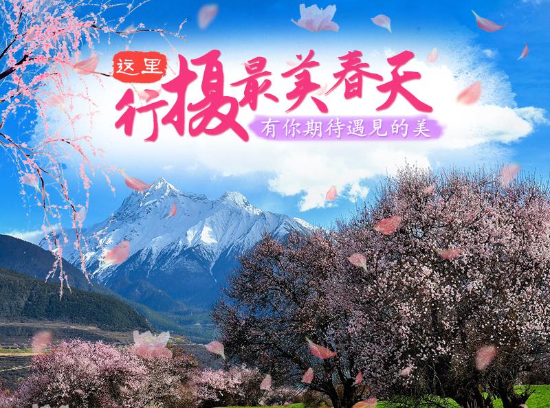 林芝桃花节-01