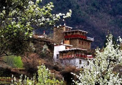 甲居藏寨海拔多少米?