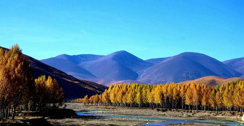 秋天的川藏线 (10)