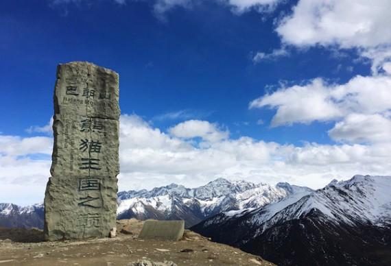 【熊猫王国之巅巴朗山徒步1日游】从冰川高原到云海涌动  行走间感受高山生态景观