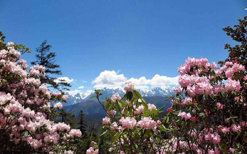 川藏线部分景点最佳摄影时间