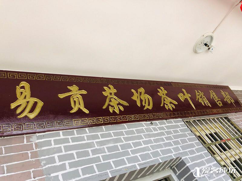 易贡茶场-(4)