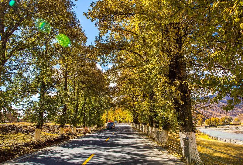 秋季川西最美景点