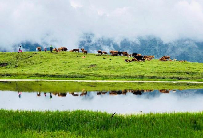 【卧龙甘海子徒步1日游】徒步于熊猫的故乡,探寻高山湖泊原始之美