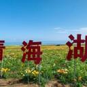 青海湖门票价格多少钱?