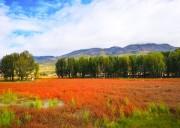 川西秋景旅游最佳时间