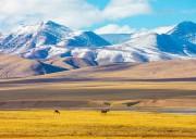 【大西部自驾】穿越西北五省深度探索26日游,横跨川、甘、青、新、藏地区,若尔盖-扎尕那--青海西宁-翡翠湖-甘肃敦煌-新疆吐鲁番-喀什-西藏阿里-玛旁雍措-冈仁波齐-珠峰-羊卓雍措-拉萨