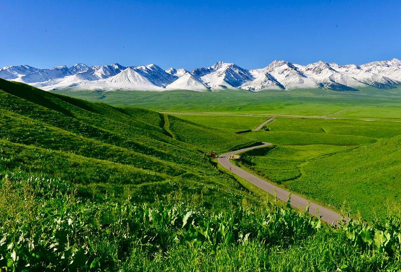 北疆旅游不可错过的景点