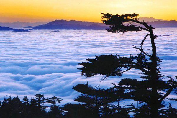 春天去峨眉山看云海