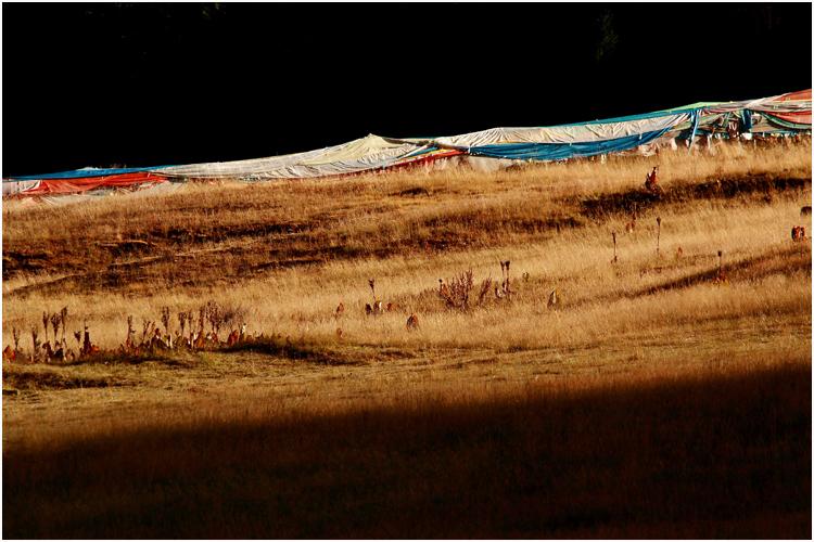 川西环线摄影路线