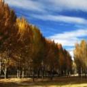 10月稻城亚丁景色