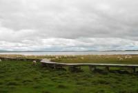 成都出发红原大草原、若尔盖、甘南、青海湖8日游单汽单卧不走回头路