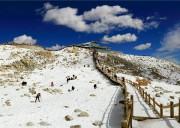 冬天去达古冰川旅游怎么样